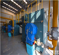 atmospheric solid fuel biomass peller fired boiler