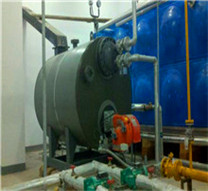 delicate processing fuel hot water vacuum fire tube boiler