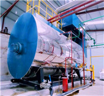 oil & gas fired boilers - thermaxglobal