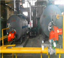 steam boilers from zozen - highly efficient and reliable
