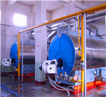filling bottle fuel hot water vacuum fire tube boiler dealer