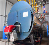 industrial 4 ton gas oil fired boiler